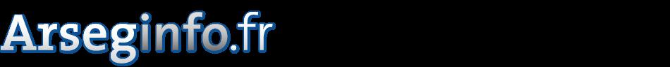 logo arseginfo